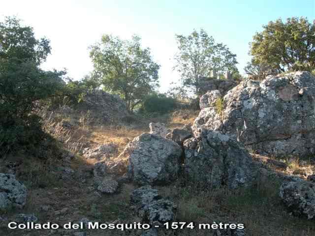 Collado del Mosquito - ES-AB- 1574 mètres