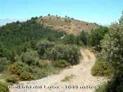 Collado del Lobo - ES-GR-1609 mètres