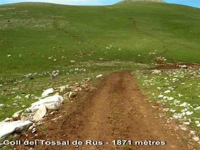 Coll del Tossal de Rus - ES-B-1871