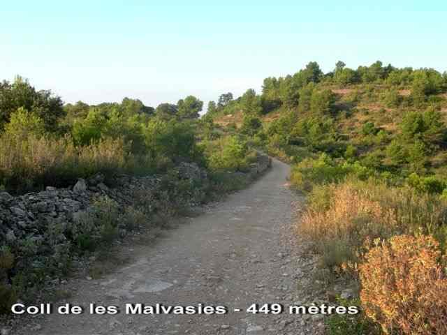 Coll de les Malvasies - ES-T- 449 mètres