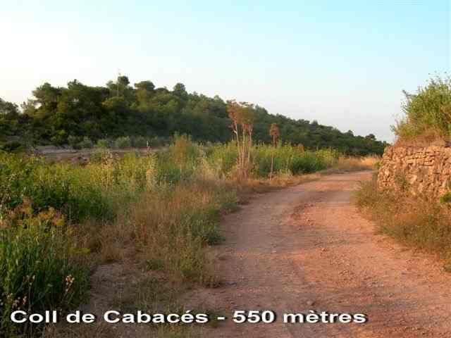 Coll de Cabacés - ES-T- 550 mètres