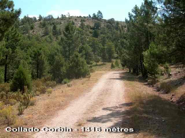 Collado Corbin - ES-TE- 1416 mètres