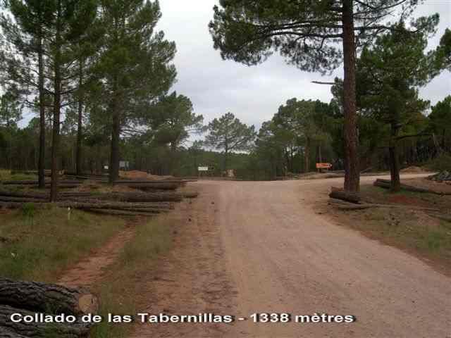 Collado de las Tabernillas - ES-TE- 1338 mètres