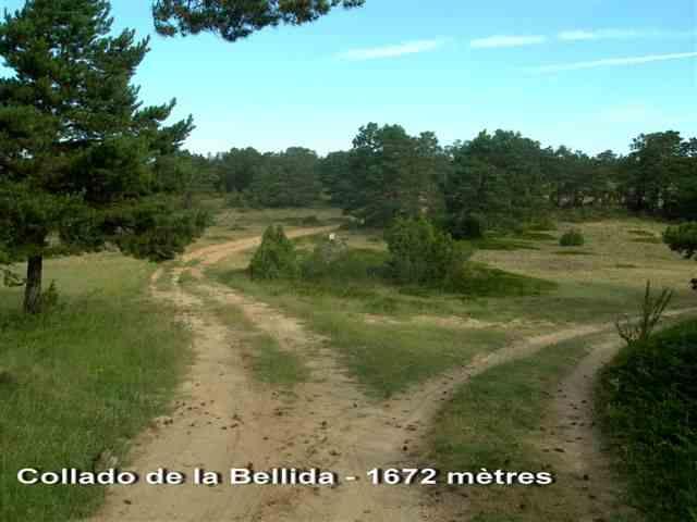 Collado de la Bellida - ES-TE- 1672 mètres