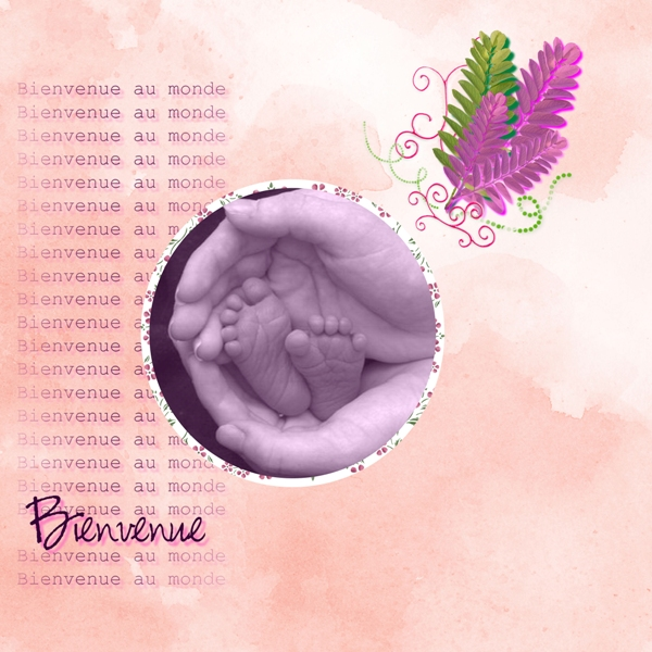 WA laura+bbpistache Angie+flower of blossom de Charlene Crunge+photo DeviantArt W