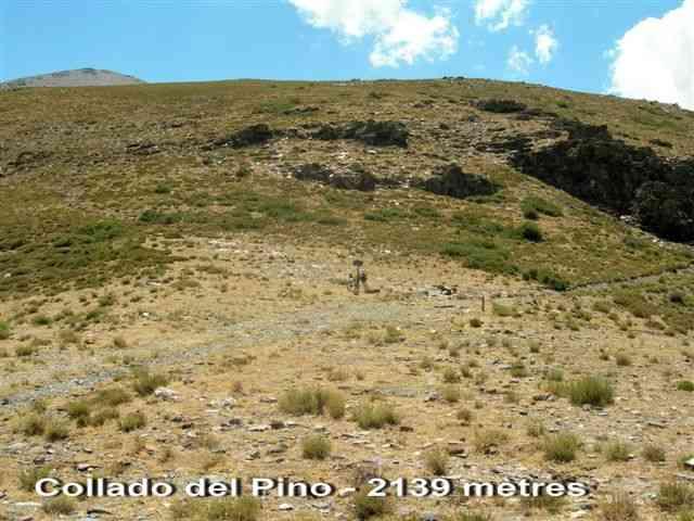 Collado del Pino - ES-GR- 2139 mètres