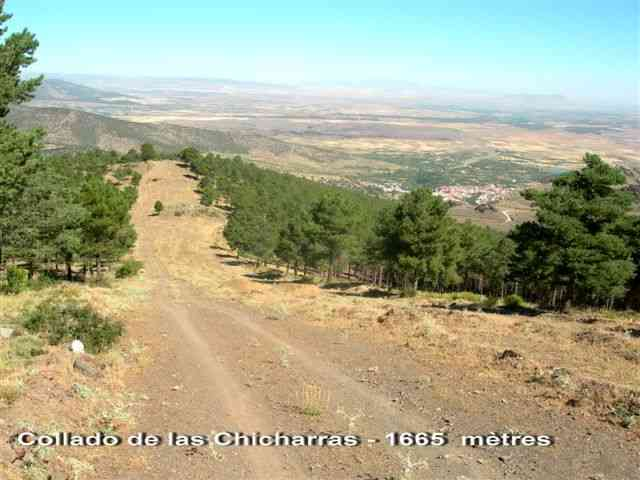 Collado de las Chicharras - ES-GR- 1665 mètres