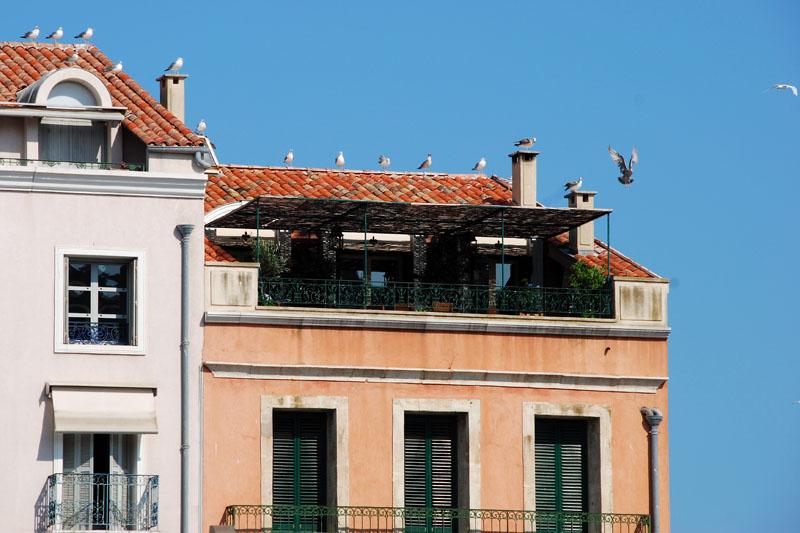 l 39 auberge espagnole de tous les appareils photo page 230 galeries photo forum le grand. Black Bedroom Furniture Sets. Home Design Ideas