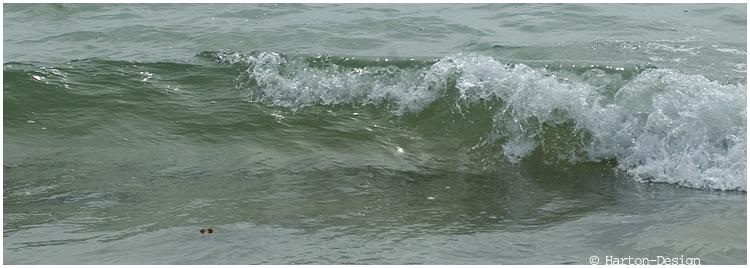 Quelques vagues 090831124002719984353766