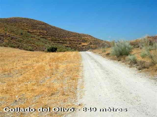 Collado del Olivo - ES-AL- 849 mètres