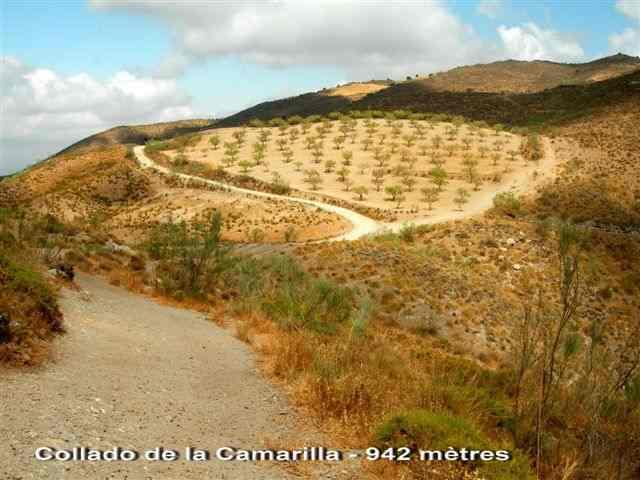 Collado de la Camarilla - ES-AL-0960