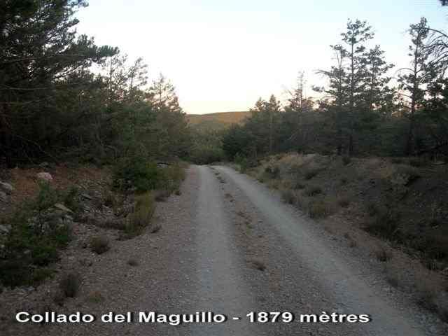 Collado del Maguillo 1879 mètres