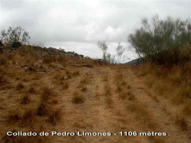 Collado de Pedro Limones - ES-AL- 1106 m.