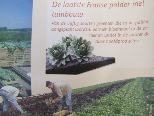 Brochures in het Nederlands 090910044338440054422236