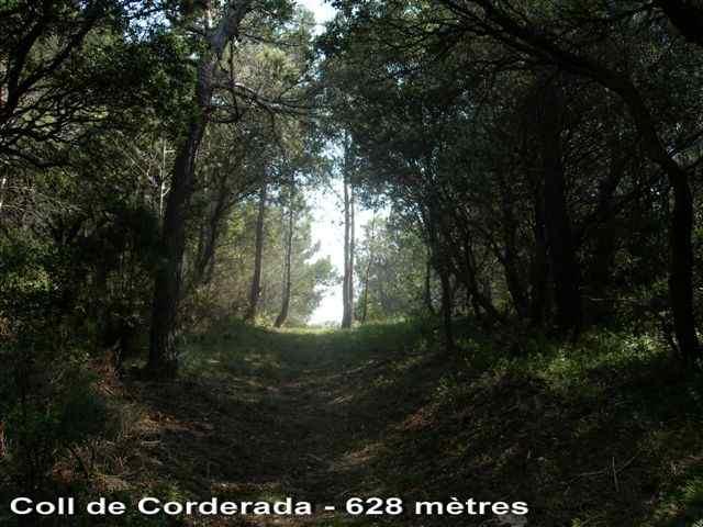 Coll de Corderada - ES-T-0628