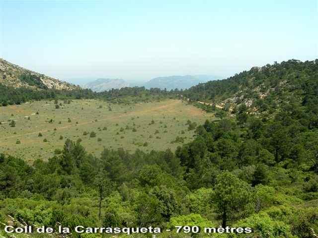 Coll de la Carrasqueta - ES-T-0790a