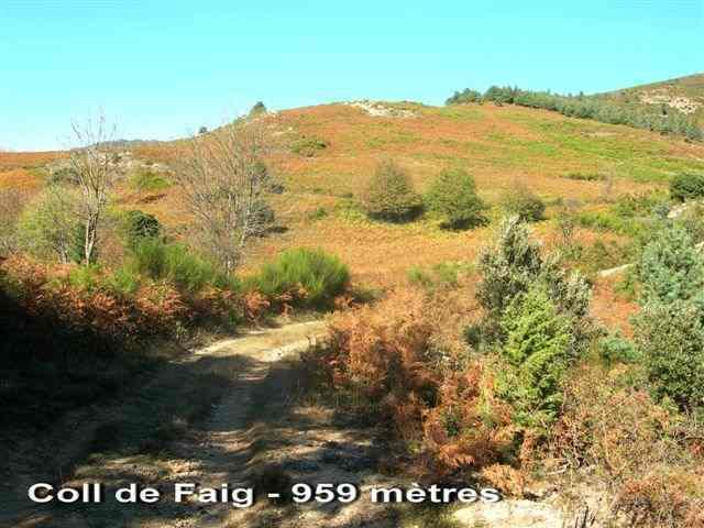 Coll del Faig - ES-GI-0959