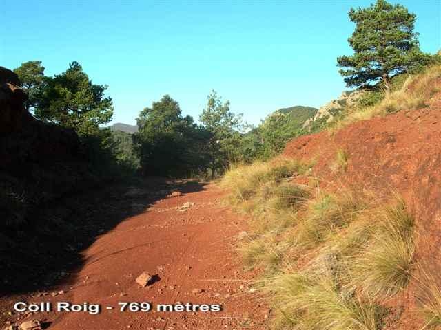 Coll Roig - ES-GI-0769
