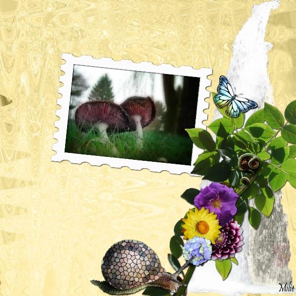 Kit A Fleur de Nous