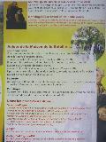 Brochures in het Nederlands Mini_091024051903440054704152
