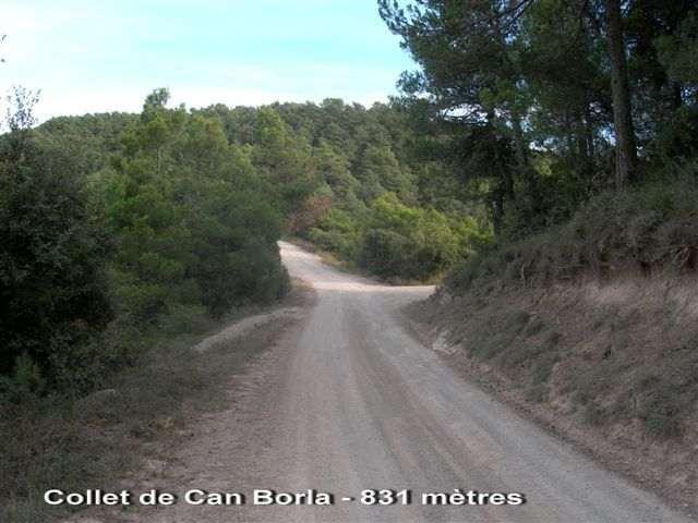 Collet de Can Borla - ES-B- 831 mètres