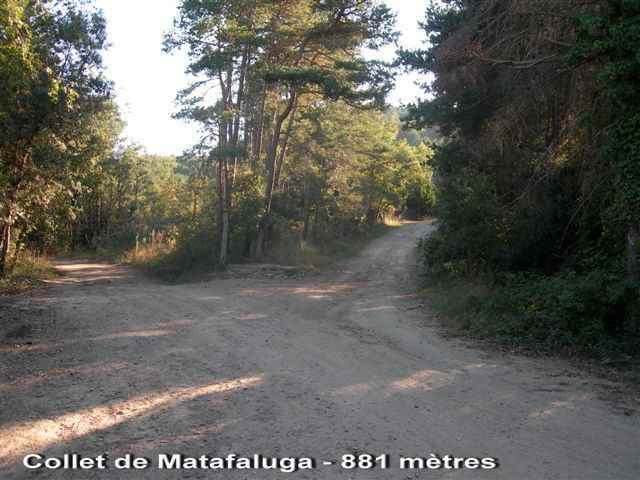 Collet de Matafaluga - ES-B-0881