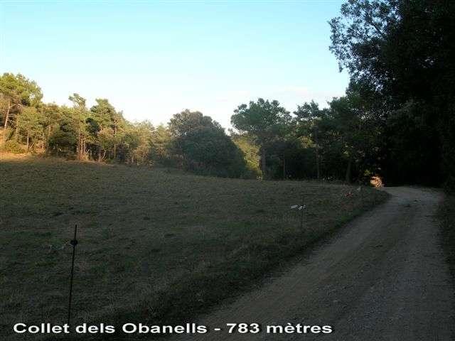 Collet dels Obanells - ES-B-0783