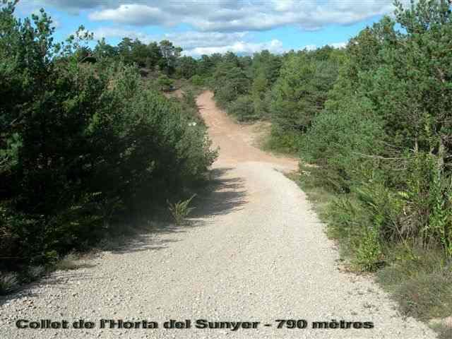 Collet de l'Horta del Sunyer - ES-B-0790a