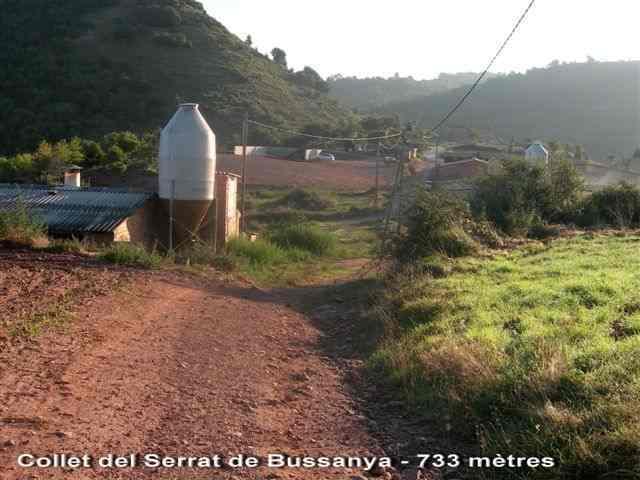 Collet del Serrat de Bussanya - ES-B- 733 m