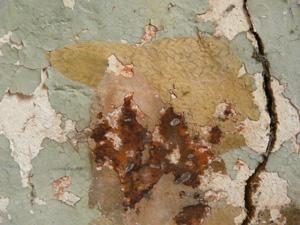 Peinture murale à la colle, consolidation couche picturale, décrassage . (sous-couche) 091113061901894654852540