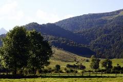 viree08 CEarudy - vallee d Aspe 6510