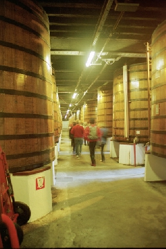 viree09 CEcognac - 3 Cognac Martell chaies2