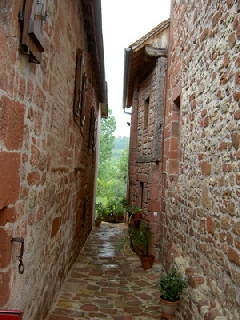 vac06 cantal - Collonges 06