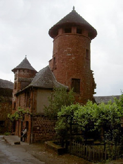vac06 cantal - Collonges 08