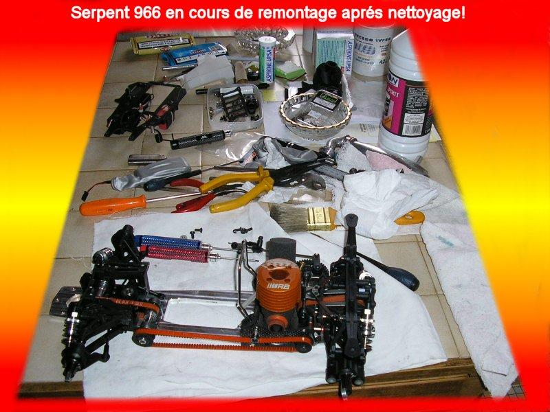 Serpent 966 091119064739408734895683