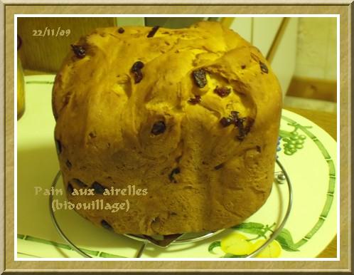 Pain aux airelles + photos 091122073138683834916032