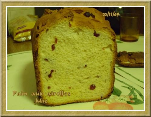 Pain aux airelles + photos 091123020115683834920728