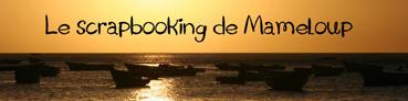 Florilèges : collection printemps/été 2010 (réservation) - Page 2 091125110623692774932316