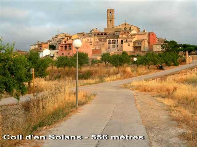 La Figuera Coll d'en Solans - ES-T- 556 m