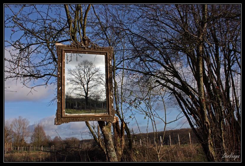 Défi 027 : paysage et miroir, pour voir hors-cadre 091216022024440185067128
