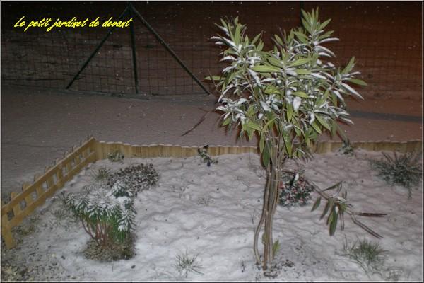 http://nsm02.casimages.com/img/2009/12/18/091218082134117955083241.jpg