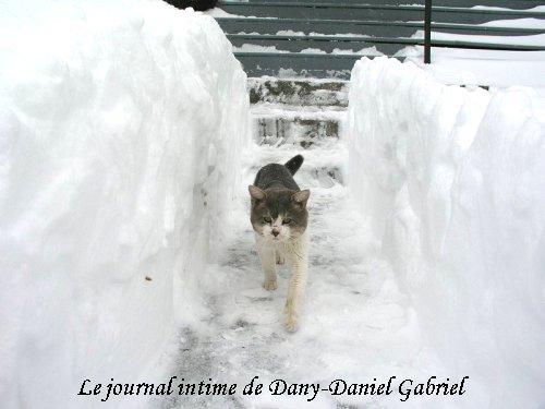 hiver sherbrooke ti loup photo dany daniel gabriel