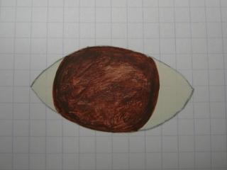 PEINTURE : Peindre les yeux 100108094235773685211644