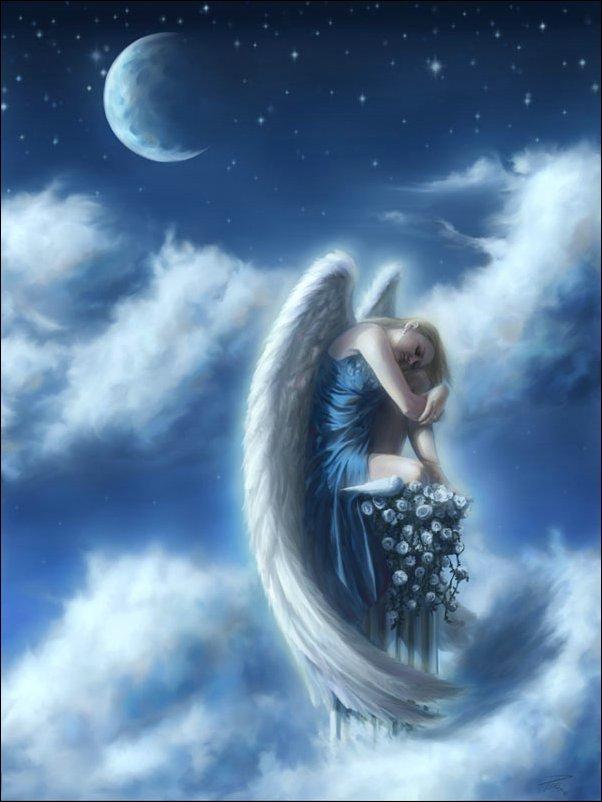 Ange Femme reveries en morceaux » archive du blog » femme ange.