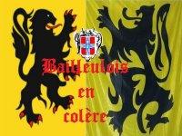 Het misbruik van Vlaanderen door extreem rechts - Den draed 100127025601440055325149