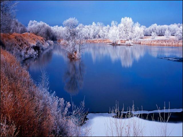 L'hiver dans les saisons 100131020132298825348973
