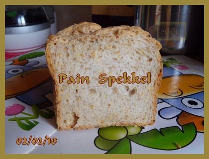 Pain Spekkel + photos 100209010522683835405579