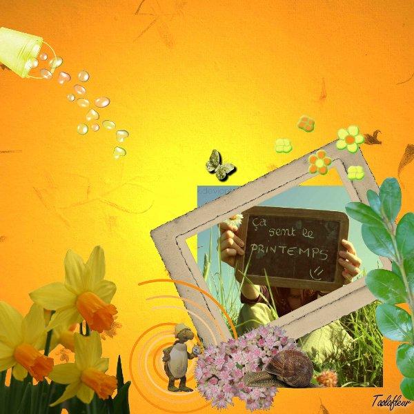 http://nsm02.casimages.com/img/2010/02/12//100212092122753545428054.jpg